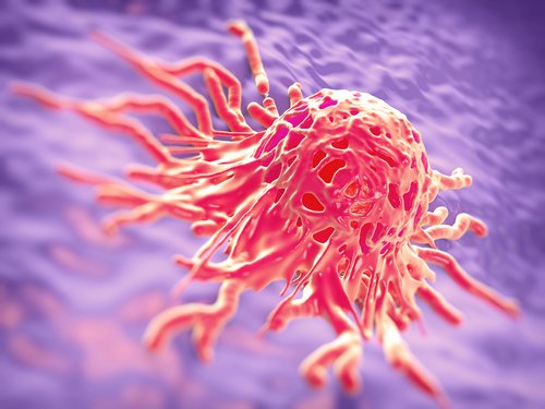 Suppressing RNA Molecule Improves Cervical Cancer's Sensitivity to Natural Compound